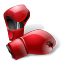 605 Boxing Gloves